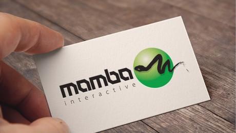 Mamba Interactive